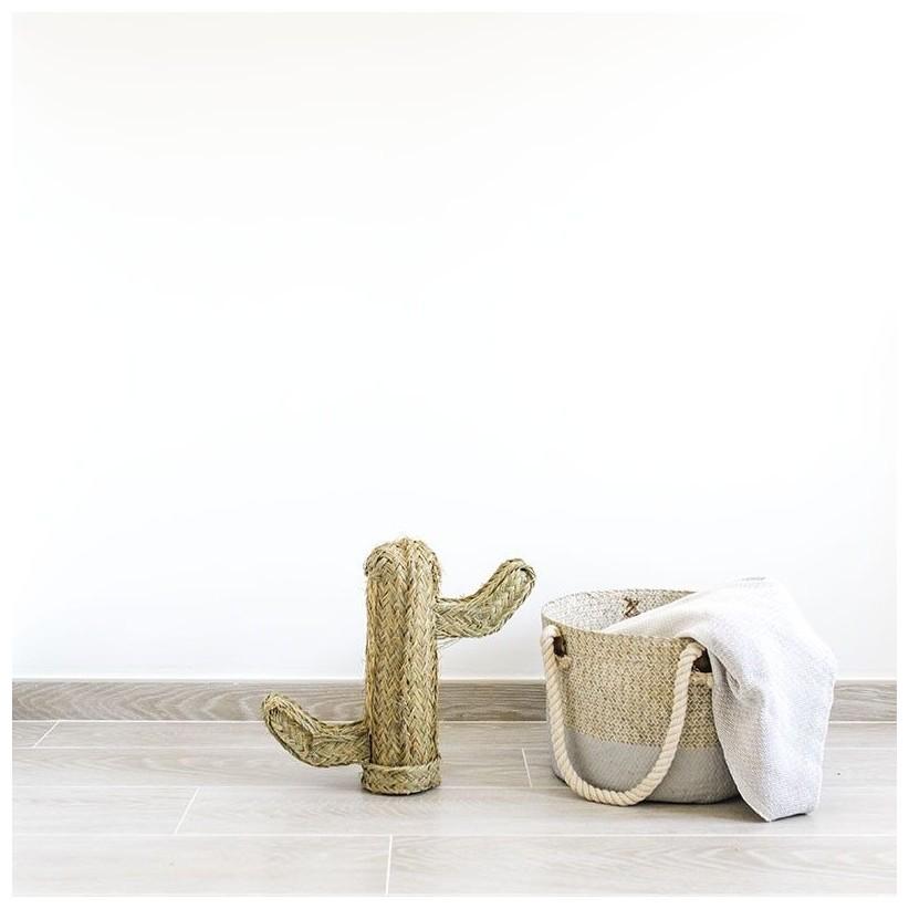 Cactus esparto h40 cm