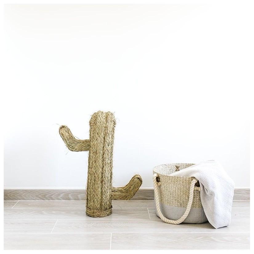 Cactus esparto h60 cm