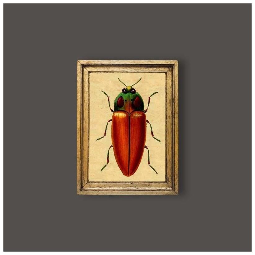 Cuadro escarabajo rojo