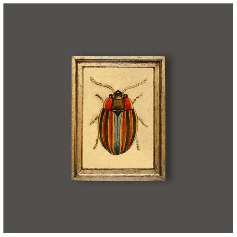Cuadro escarabajo multicolor