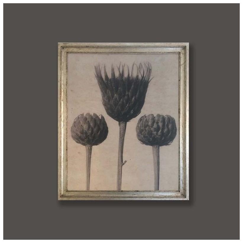 Cuadro plata motivo vegetal