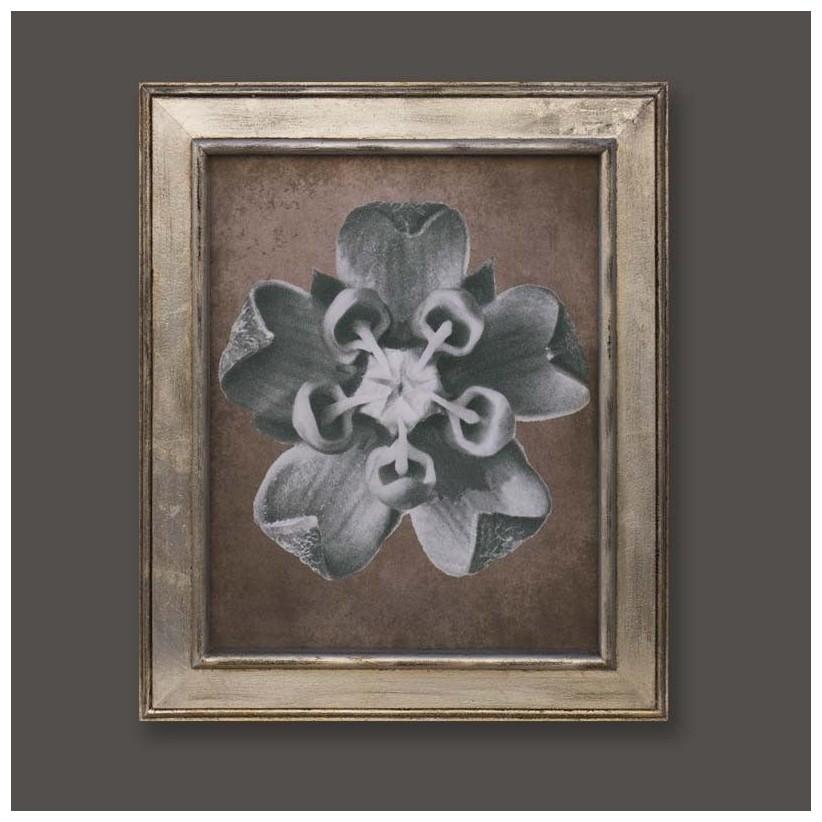 cuadro plata flor 2
