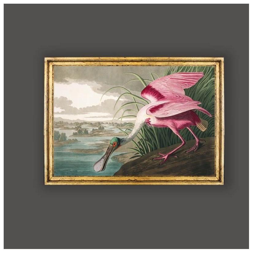 cuadro oro ave espatula rosada