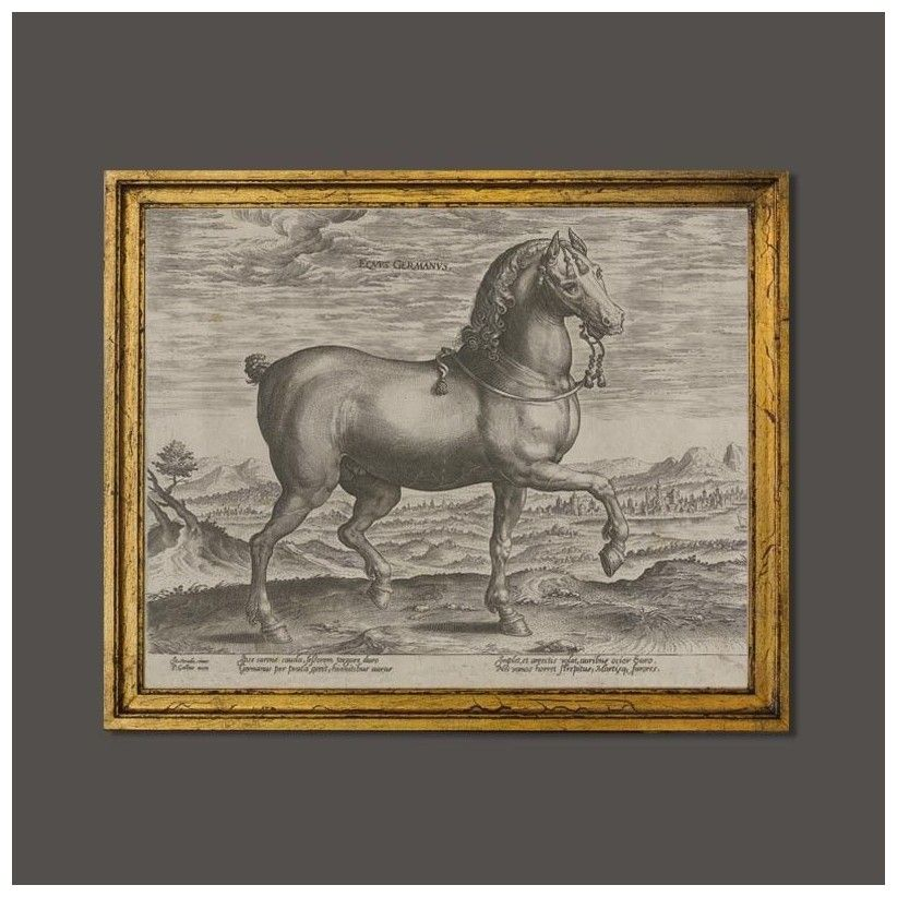 Cuadro de caballo germano