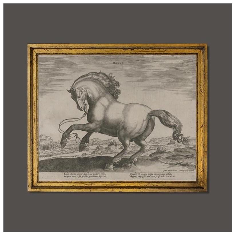 Cuadro caballo danés